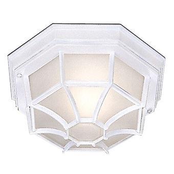 Światło białe sześciokątne odkryty sufitowego - reflektor 2942WH