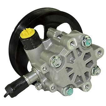 Power Steering Pump Discovery Mk3, Range Rover Mk3, Ls, 4.0, 4.4, 4.2 Qvb500390, lr006329