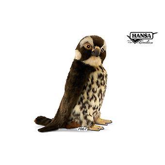 Hansa hug Falcon