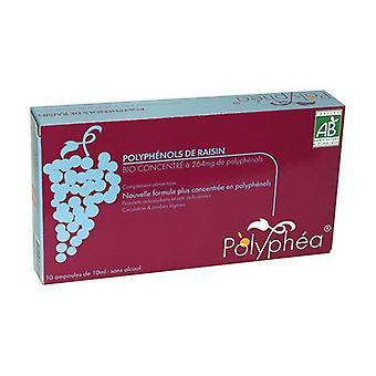 Polyphea - Biologische druif polyfenolen 264mg 10 ampullen