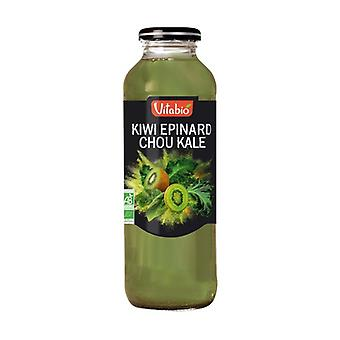 Fruit and Vegetable Cocktail Aquitaine Kiwi Spinach Cabbage Kale 500 ml