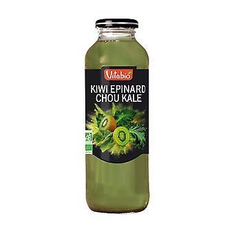 Hedelmät ja vihannekset Cocktail Aquitaine Kiwi Pinaatti Kaali Kale 500 ml