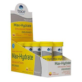 Trace Minerals Max-Hydrate Endurance, 1 Tablet