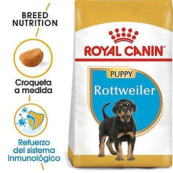 Royal Canin Rottweiler Junior (Dogs , Dog Food , Dry Food)