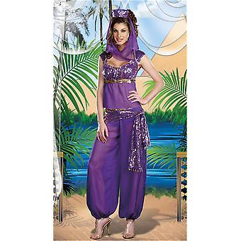 Purple Indian Belly Dance Costume Arabian Masked Girl Costume Genie Costume