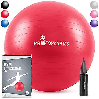 Anti-Burst Exercise Ball 55cm Heavy Duty With Pump - Red