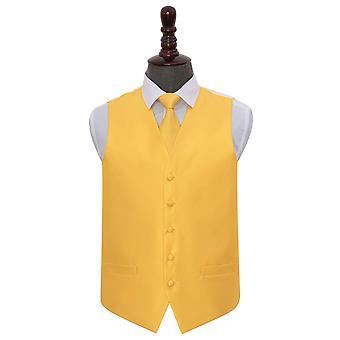 Sunflower oro solido controllo matrimonio Waistcoat & Set di cravatte