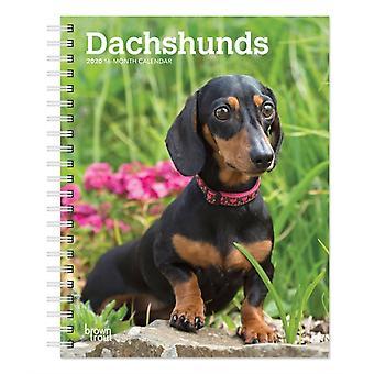 Dachshunds 2020 Diary
