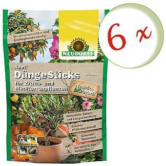 Sparset: 6 x NEWDORFF Azet® Удобрения для цитрусовых и средиземноморских растений, 40 палочек