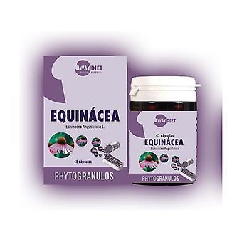 Echinacea Phytogranulos 30 capsules