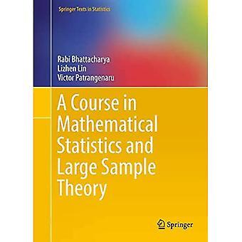 Een cursus in wiskundige statistieken en grote steekproeftheorie (Springer-teksten in statistieken)