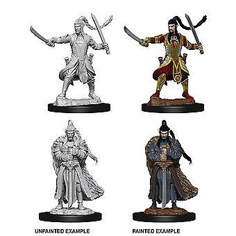 Dungeons & Dragons Nolzurs underbara omålade miniatyrer Manlig alv Paladin