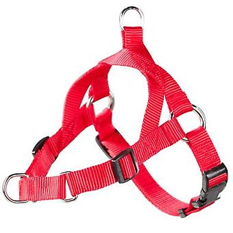 Arppe Harness Educational 2 Uses Red (Dogs , Collars, Leads and Harnesses , Harnesses)