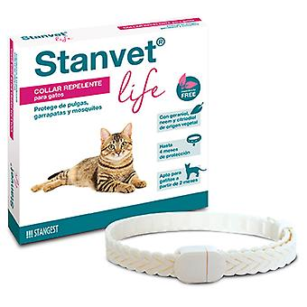 Stangest Stanvet Life Anti-Insect Collar For Cats