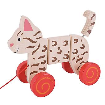 Bigjigs Toys tire a lo largo (Cat)