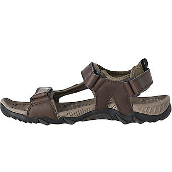 Trespass Mens Barkon Leather Outdoors Walking Hiking Active Sandals - Dark Brown