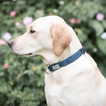 Dog Collar - navy canvas