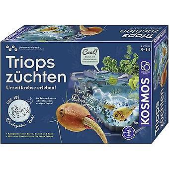 Kosmos 633097 Triops züchten Science Kit (Set) 8 Jahre und mehr