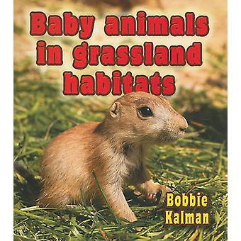 Baby dieren in grasland habitats door Bobbie Kalman