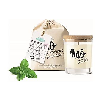 Natural scented candle large model 40h 200 g