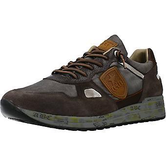 Cetti Sport / C1216 Dakar Color Shoes