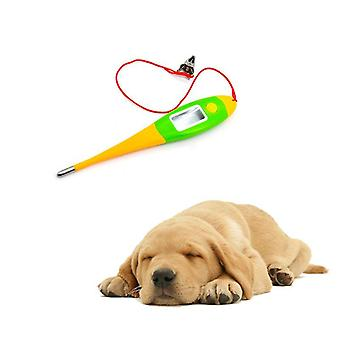 Professional Digital Thermometers For Pets