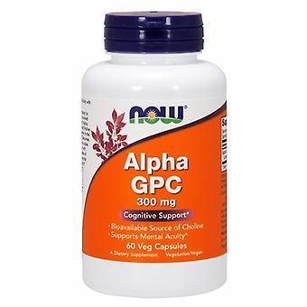 """עכשיו מינוס אלפא GPC, 300 מ""""ג, 60 Vcaps"""