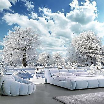 3d Winter Snow Landscape Murals Living Room - Tv Sofa Background Wall Paper