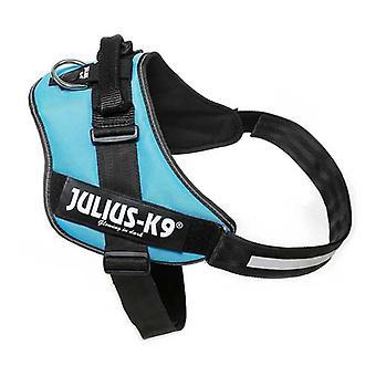 Julius-K9 IDC-Powerharness For Dogs Size: 4, Aquamarine