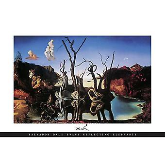 Salvador Dali poster zwanen die olifanten weerspiegelen