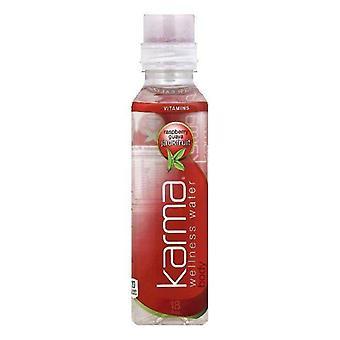 Karma Water Body Rasb Guava Jackfr-( 532 Ml X 12 Bottles )