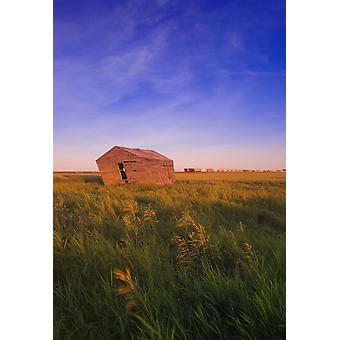 Dilapidated Shack In A Field PosterPrint