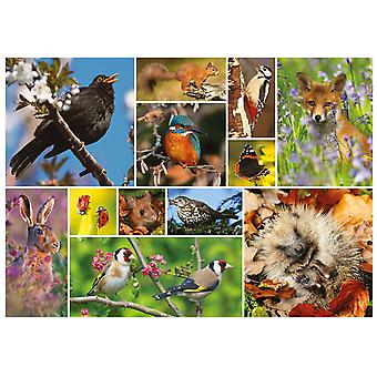 Otter House RSPB Great British Wildlife Jigsaw Puzzle (1000 Pieces)