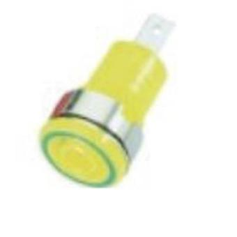 Stäubli SLB 4-F6,3 Turvaliitäntä Pistorasia, pystysuora pystysuora pin halkaisija: 4 mm vihreä, keltainen 1 kpl)