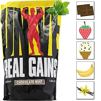 Universal Nutrition Real Gains - 20 Servings - Premium Mass and Muscle Gainer