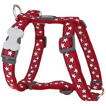 Red Dingo Harness One Touch Style Stars Red