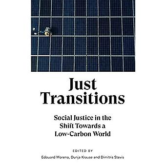 Just Transitions - Social Rättvisa i övergången till en koldioxidsnål Wo