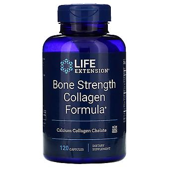 Prolongation de la durée de vie utile, Formule de collagène de force d'os, 120 capsules