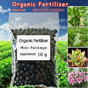 Organic Fertilizer 10g - General Purpose Safe And Pollution Free Use Flower