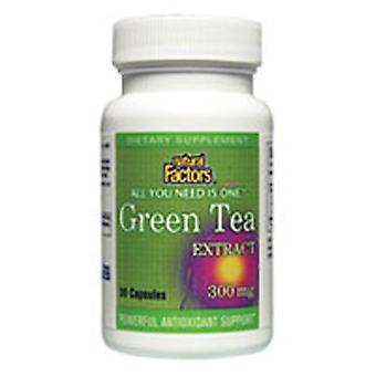自然な要因緑茶エキス, 300 mg, 60 キャップ