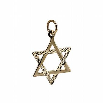 9ct Gold 21x17mm diamond cut Star of David Pendant