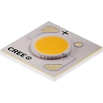 CREE HighPower LED Warm white 10.9 W 343 lm 115 ° 9 V 1000 mA C00A20E8 1304 0000 Cxa-000
