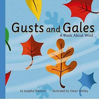 Rajadas de vento e vendavais
