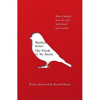 Finch in My Brain von Martino Sclavi
