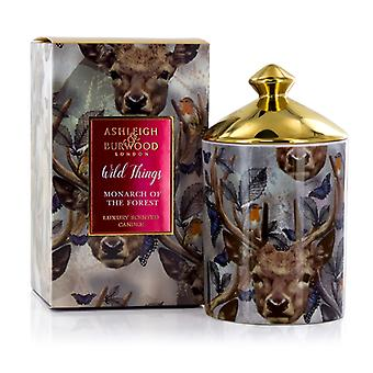 Ashleigh & Burwood Wild Things Luxury Scented Gift Boxed Candle