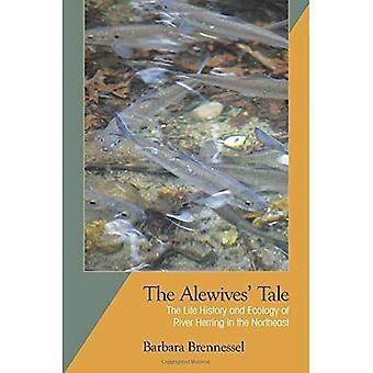 Le conte de gaspareau: Le cycle biologique et écologie du hareng River dans le nord-est