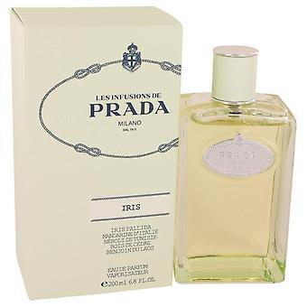 Prada infusion d'iris eau de parfum spray by prada 457790 200 ml