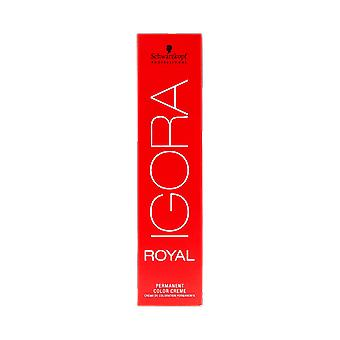 Schwarzkopf Igora Royal 60ml 8-1 vaalea blondi Cendre