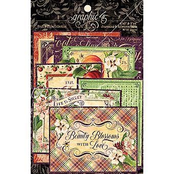 Graphique 45 Fruits & Flora Ephemera & Cartes de journalisation