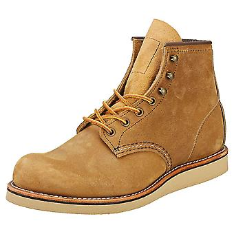 Red Wing Rover 6 Inch Hawthorne Mens Chukka Laarzen in Camel